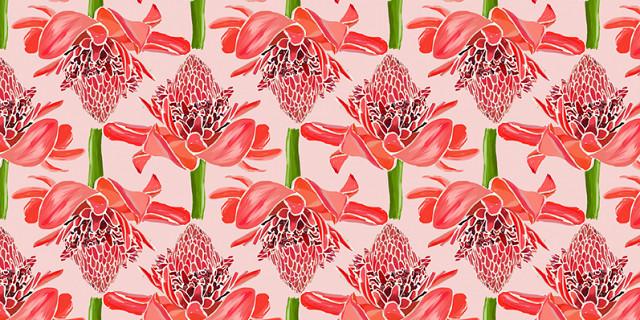 Christelle Histe - Fleurs de gingembres 79067