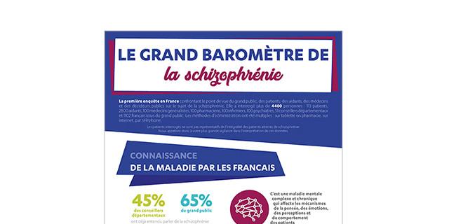 Pigment des Belettes (Graines de SOL) - Infographie Le baromètre de la Schizophrénie 80868