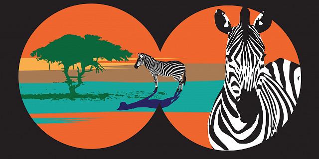 Suzanne Bolze - Safari 81943